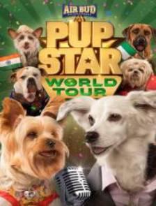 pur star world tour